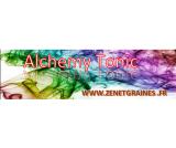 Alchemy Tonic CBD
