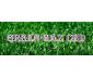 Green Gaz CBD