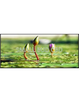 Small BUD CBD