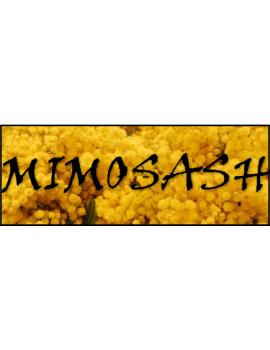 HASH Mimosa